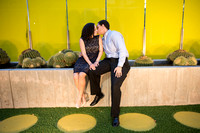 Engagement: Mesa Arts Center